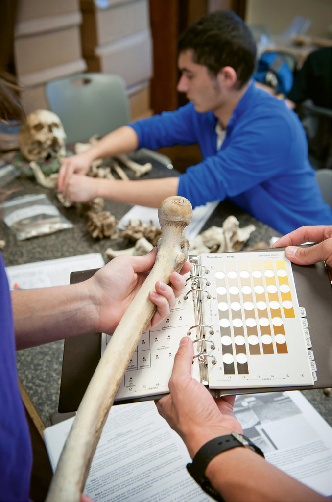 Forensic anthropology students take a Sherlockian look at decomposition through the Forensic Osteology Research Station (FOReSt) at WCU