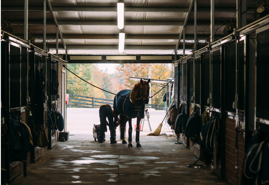 In addition to reinvigorating Polk County's equestrian scene, TIEC has become a big economic driver for the area.