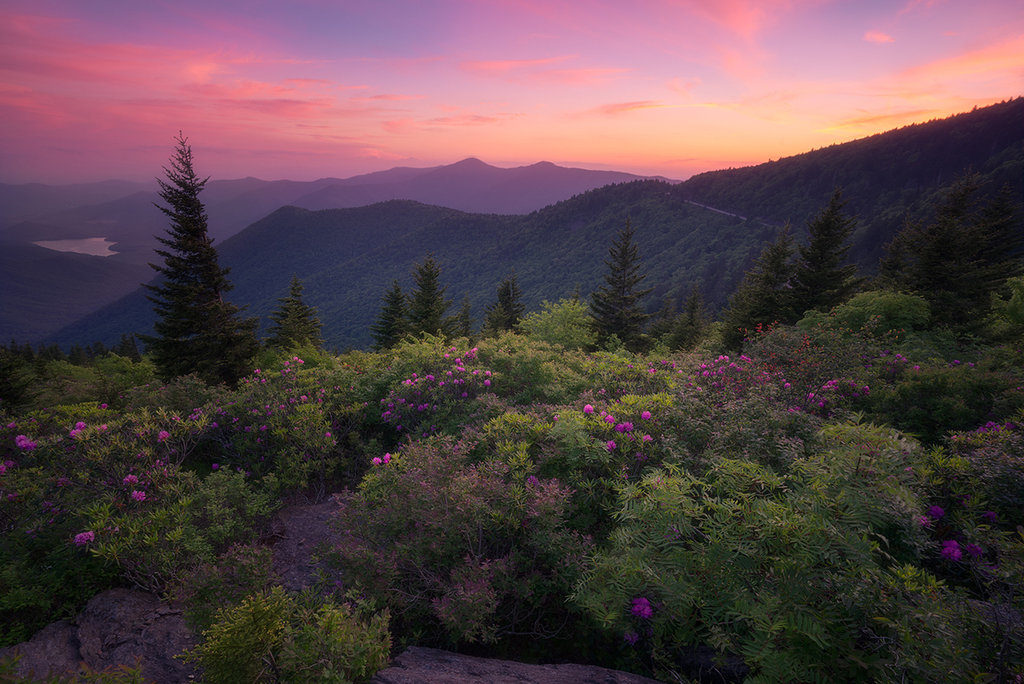 Honorable Mention: Blue Ridge Memories by Jason Penland (Professional category)