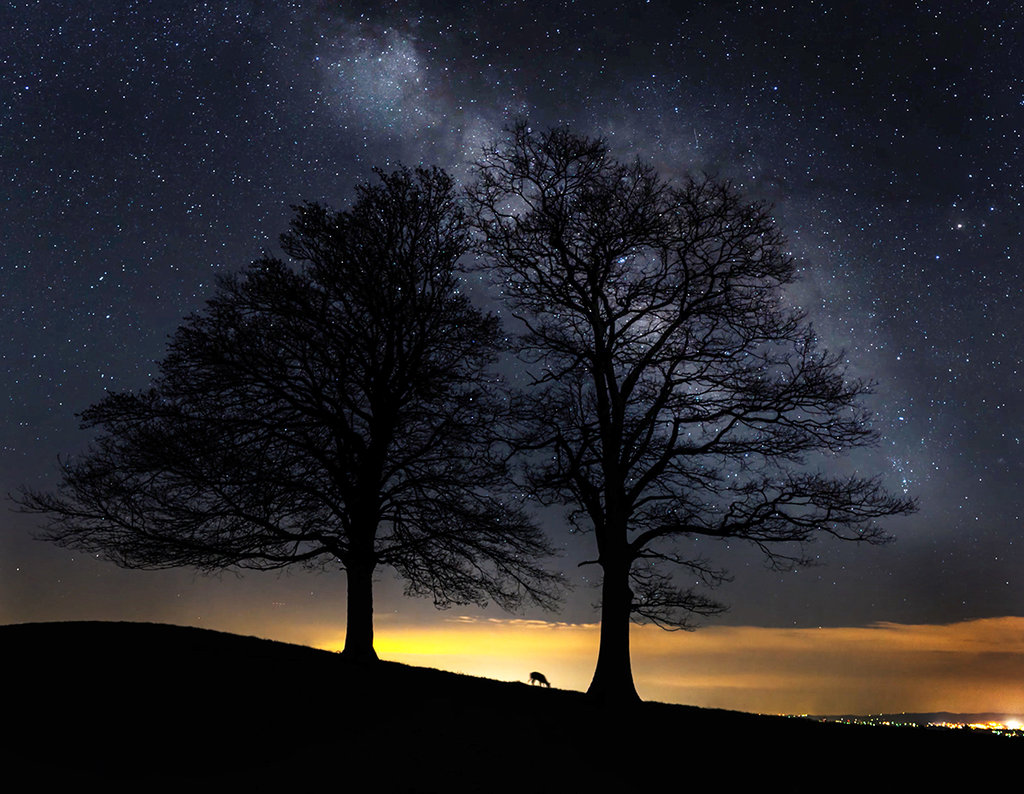 Honorable Mention: Undeer the Heavens by Jim Ruff (Professional category)