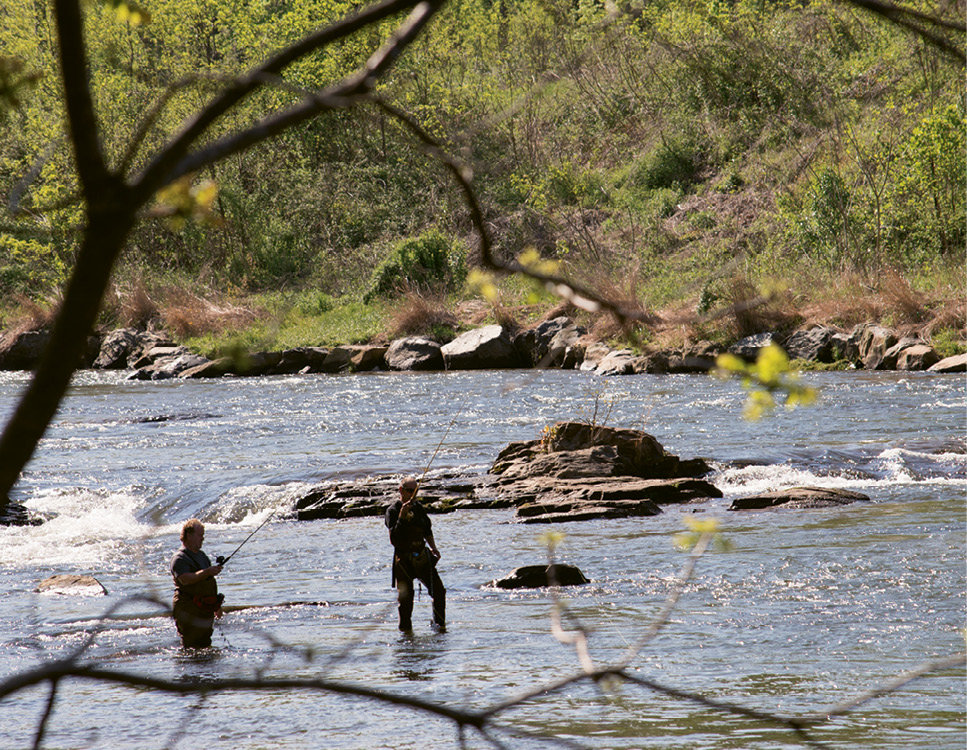 The Tuckaseegee River brims with brown, brook, and rainbow trout.