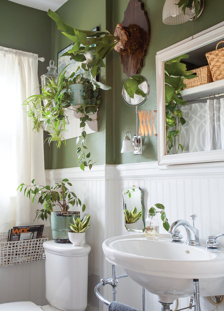 Philodendrons, ferns, and spider and snake plants all thrive in the humid, low-light conditions many bathrooms allow.