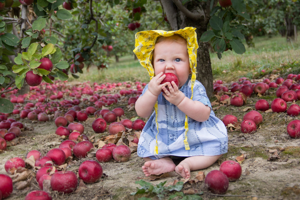 HONORABLE MENTION - CLOVER GRACE - Eliza Bell - A bonneted baby at an apple orchard in Hendersonville. Professional category